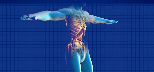 una-nueva-tecnica-aumenta-la-eficacia-de-la-quimio-en-pacientes-con-cancer-de-pancreas.jpeg