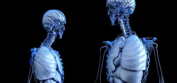 desarrollan-una-tinta-novedosa-para-imprimir-en-3d-estructuras-que-imitan-los-huesos.jpeg